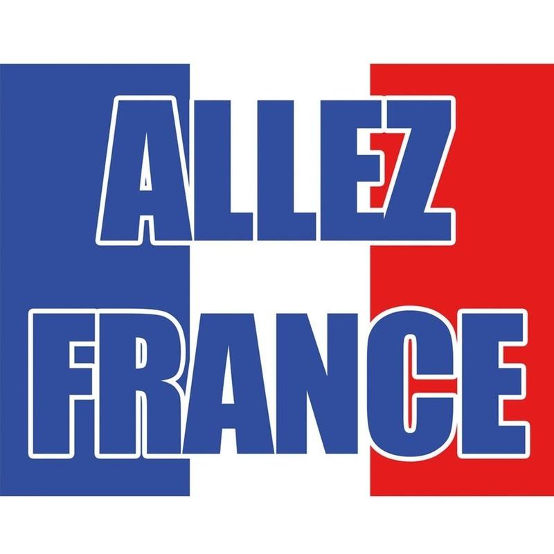 Halloween In Frankrijk.Halloween Vlag Frankrijk 70 X 100 Cm In De Griezeligste